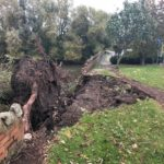 Fallen tree damages brick wall of Telford reservoir following Storm Callum